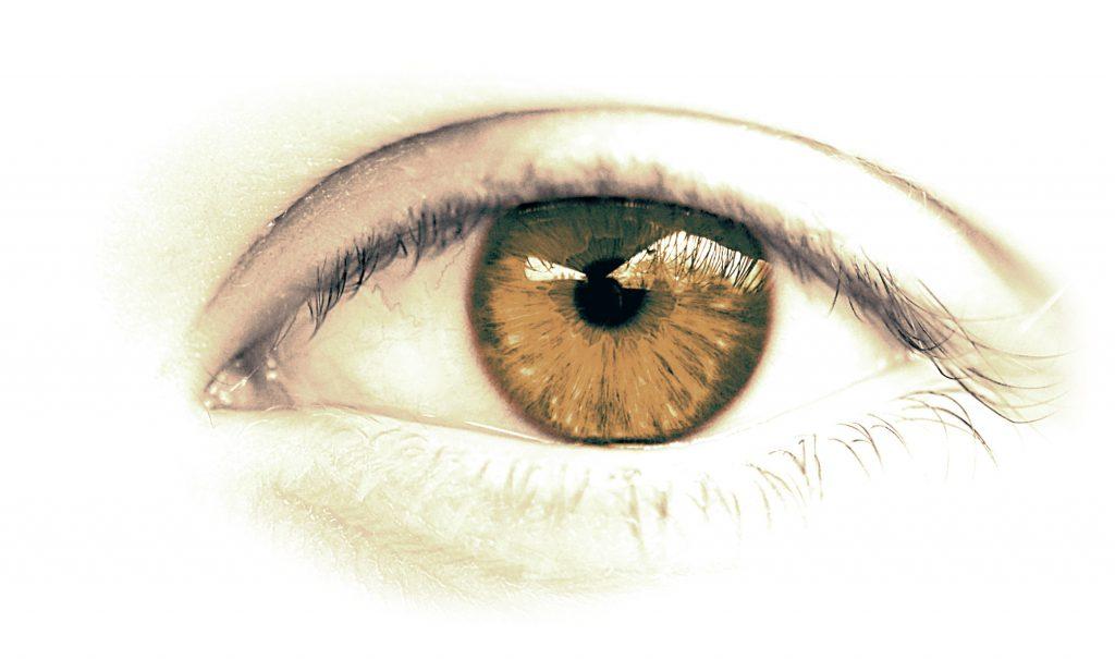 Auge in braun von Optik Sagawe
