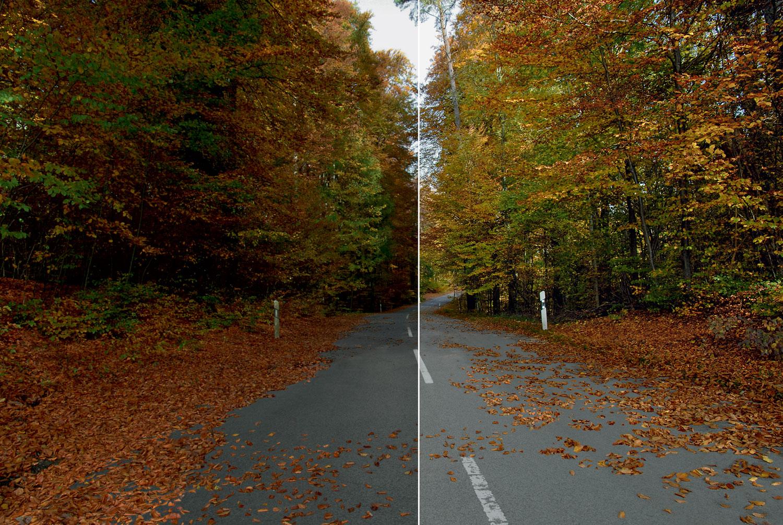 Herbstszene ohne Zeiss i.Scription